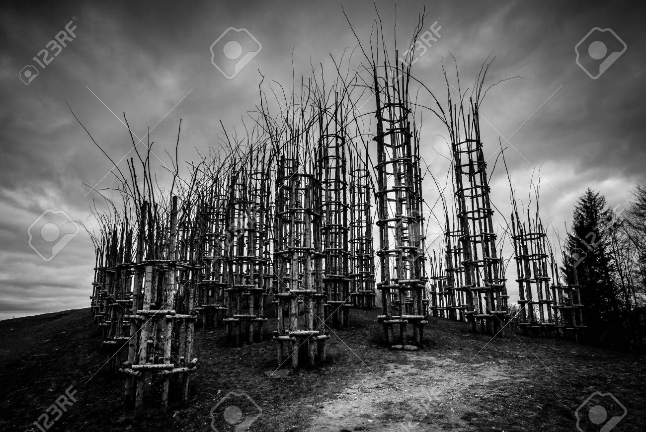 Vegetable cathedral black and white image