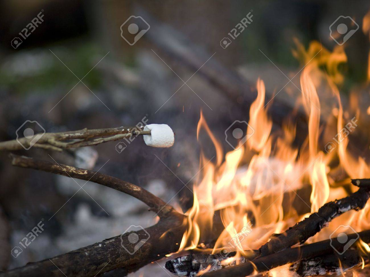 Roasting Marshmallow Over A Raging Campfire Stock Photo
