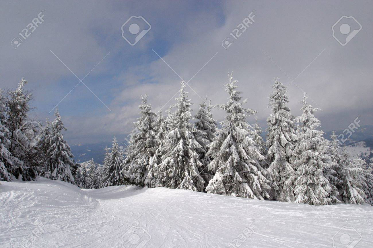 Carpathian Mountains are located in the Western Ukraine and take over 4% of the territory of Ukraine. - 10015867