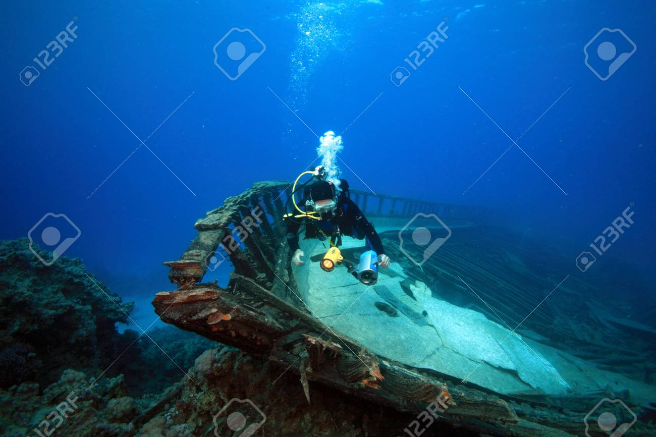 Diving in the Red Sea - 18044439