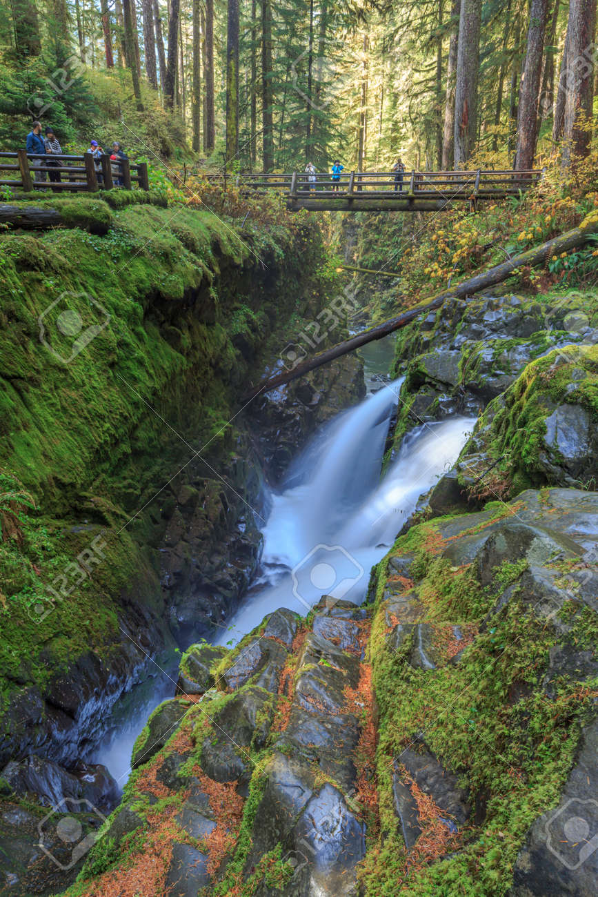 Sol Duc Falls, Olympic National Park, USA - 169003310