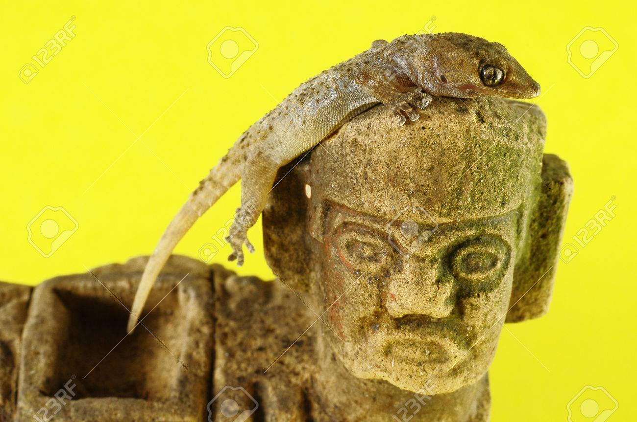 One Small Gecko Lizard and Mayan Statue on a Colored Background Stock Photo - 22761393