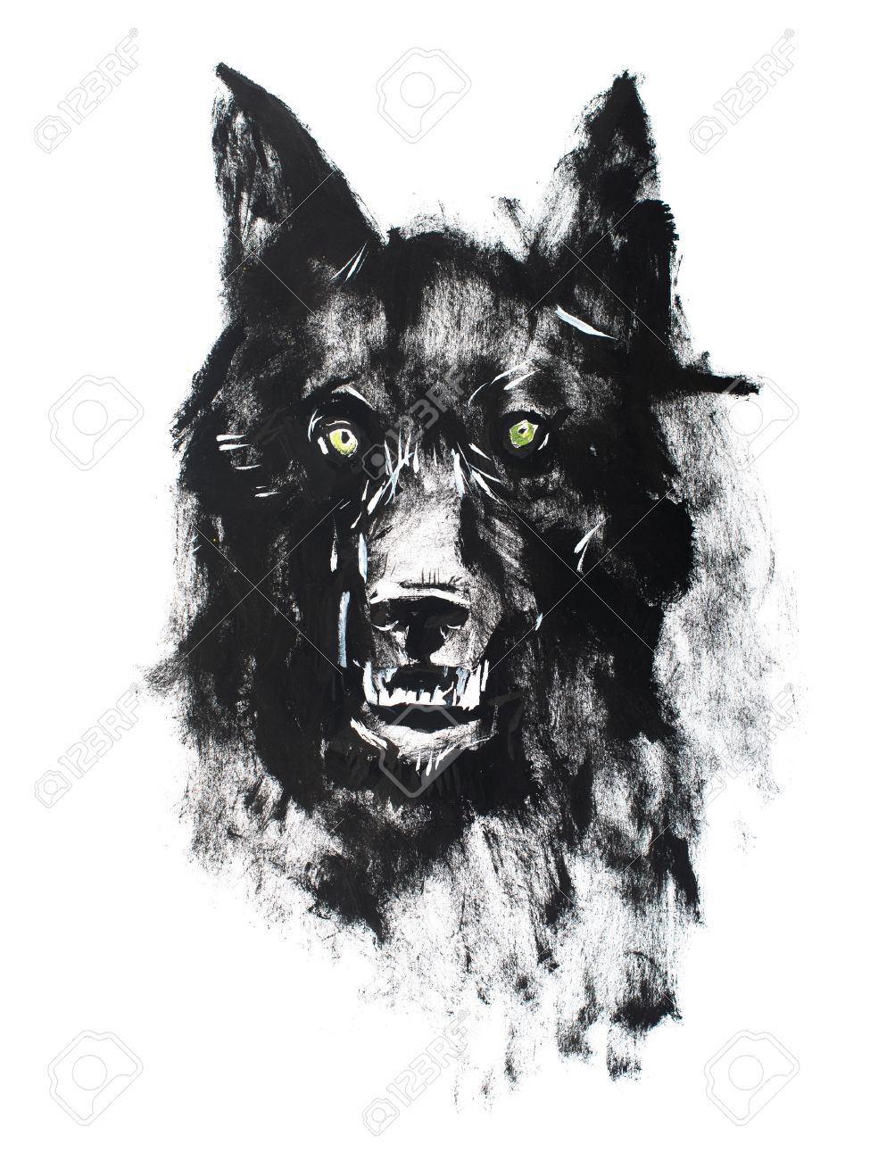 fc7b1b400 Stock Photo - Watercolor drawing of black angry looking wolf. Animal  portrait on white background