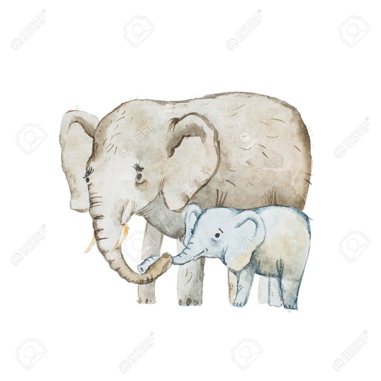 Watercolor drawing of elephant family, mother and calf - 82237167