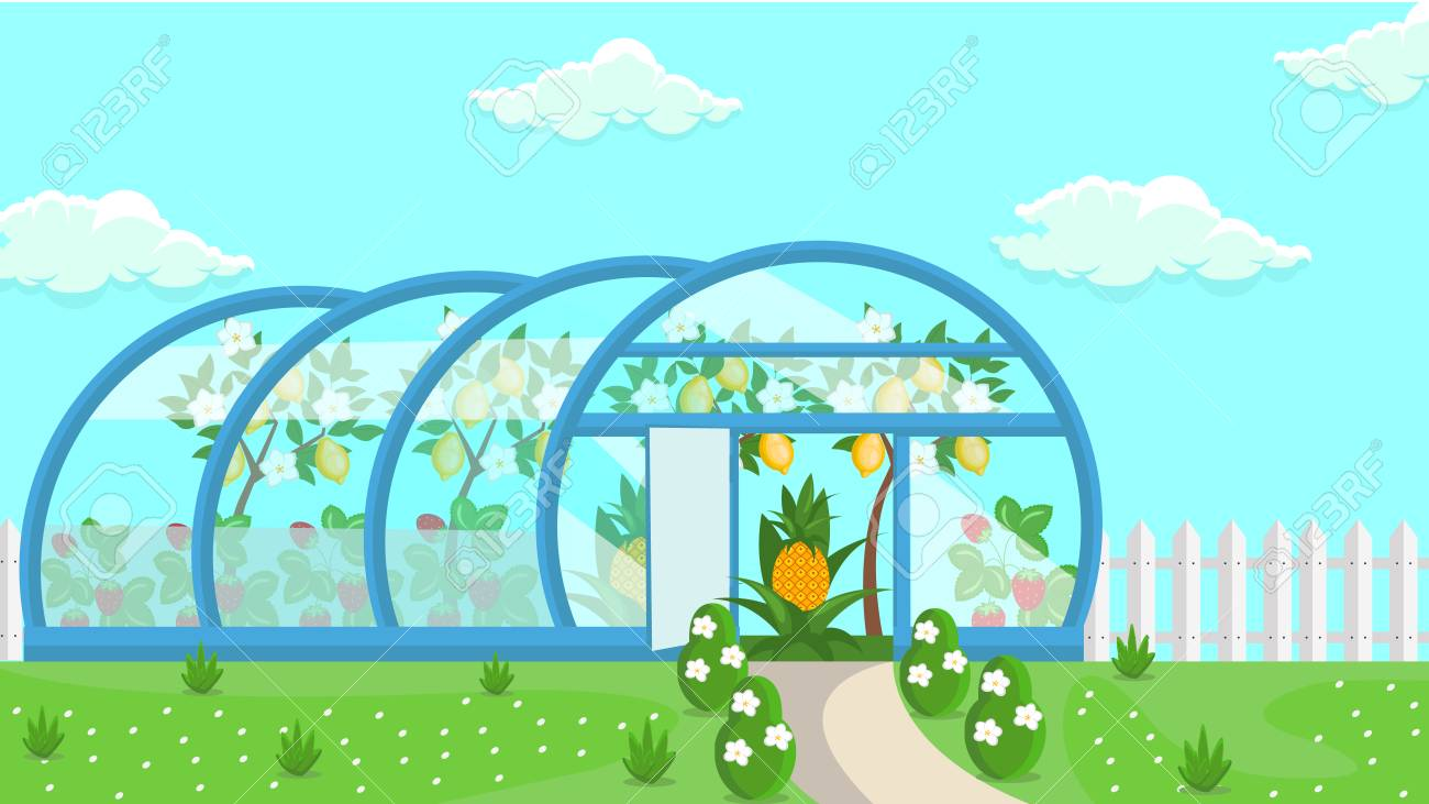 Image result for greenhouse animation