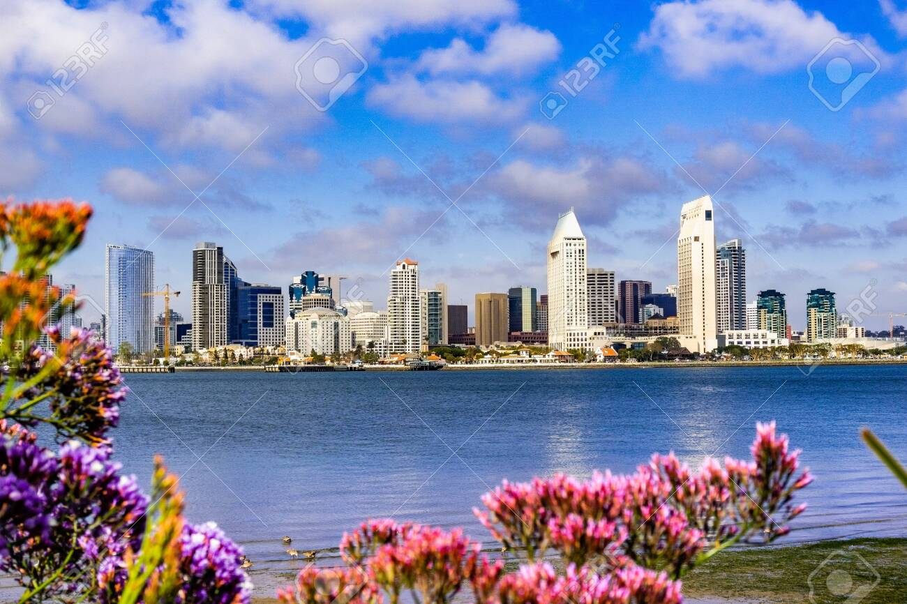 Panoramic View Of The Downtown San Diego Skyline Taken From Coronado Stock Photo Picture And Royalty Free Image Image 119986618