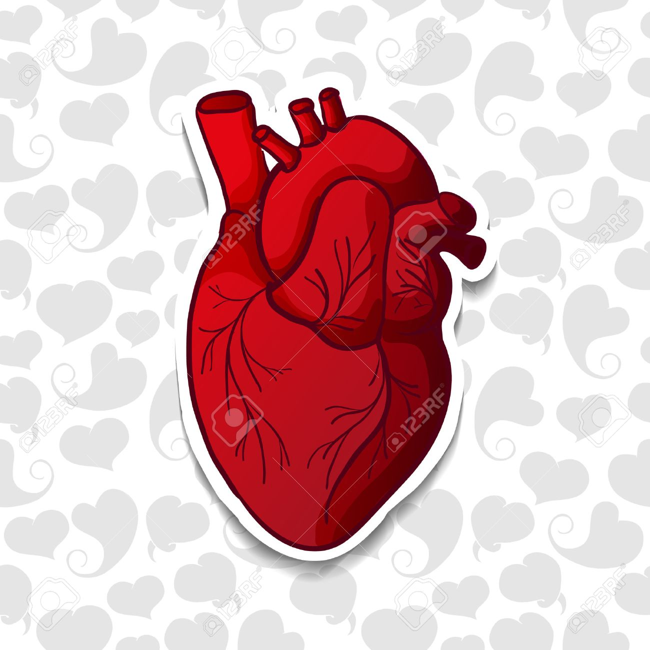 Dibujo Del Corazón Humano En El Patrón De Fondo De Los Corazones De