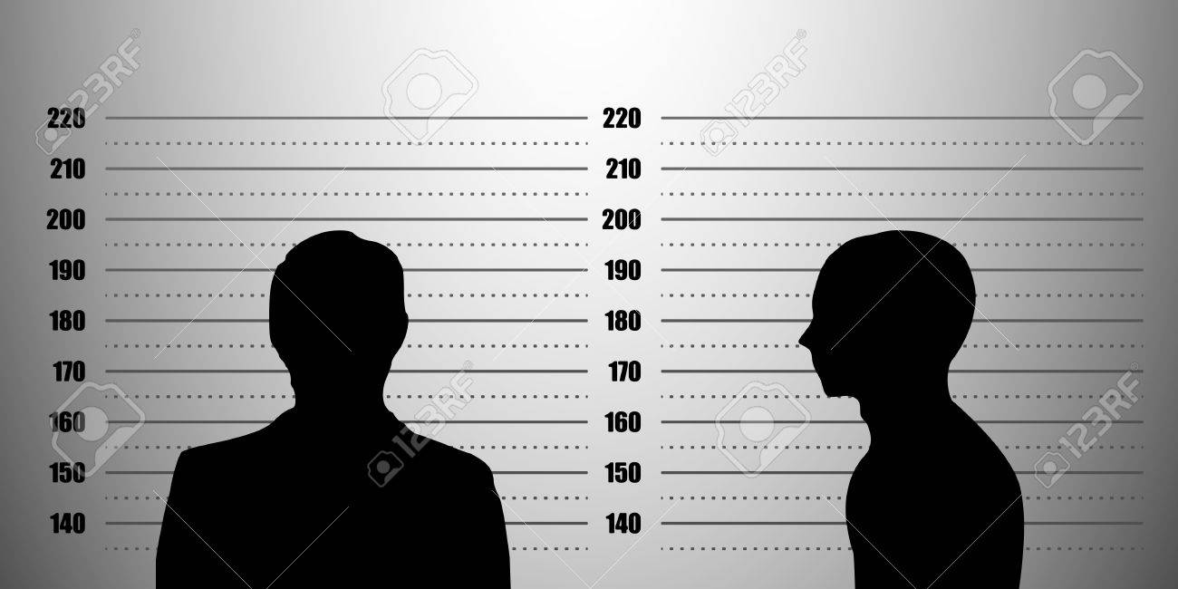detailed illustration of a mugshot background with a portrait and profile silhouette, metric scales - 18689593