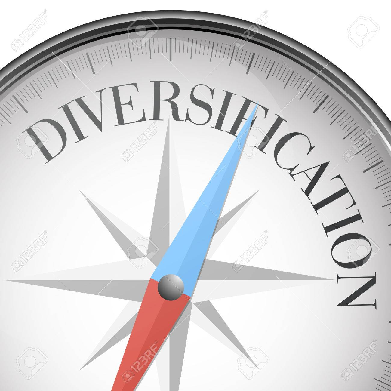 detailed illustration of a compass with diversification text - 38197387