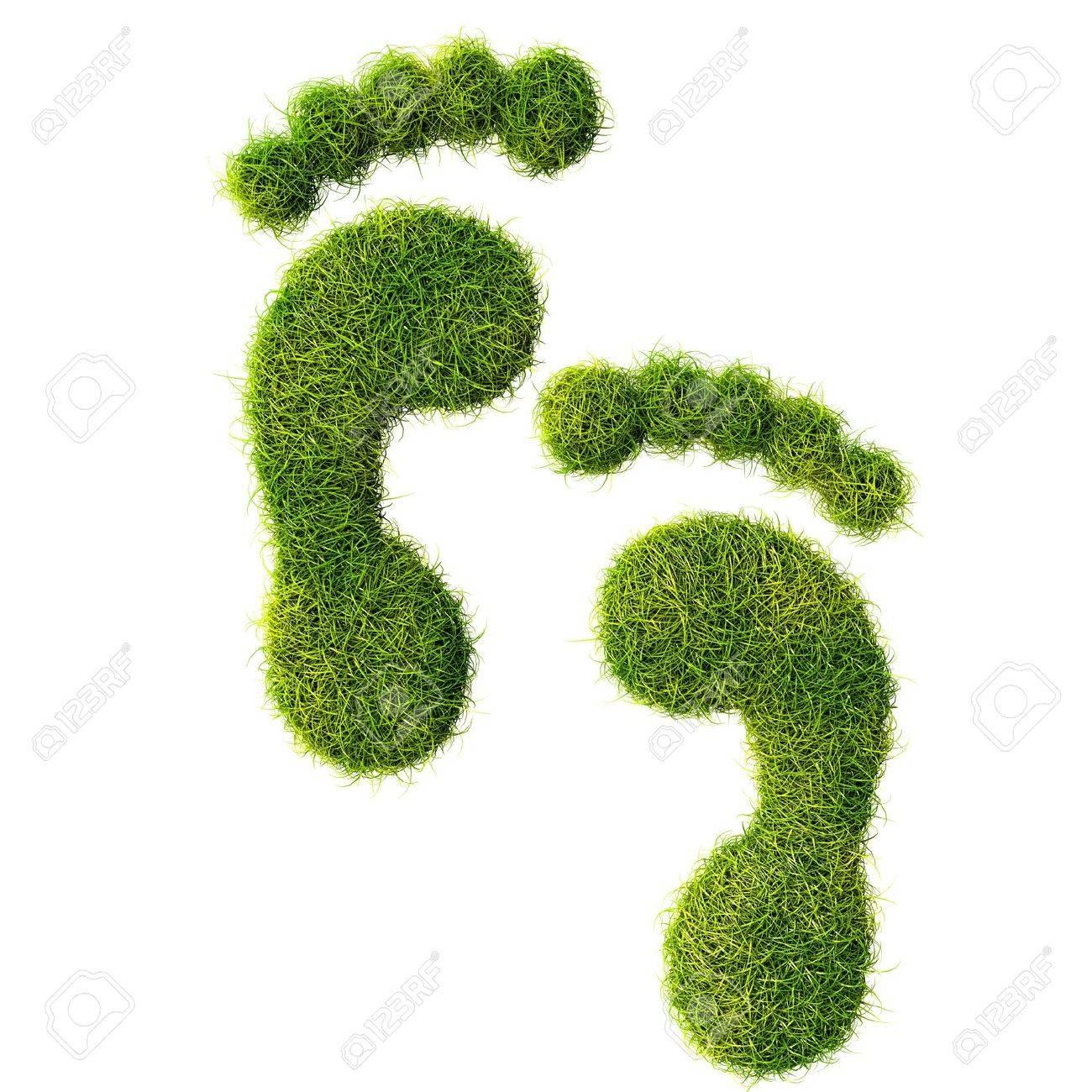 Ecological footprint concept illustration - 20324994