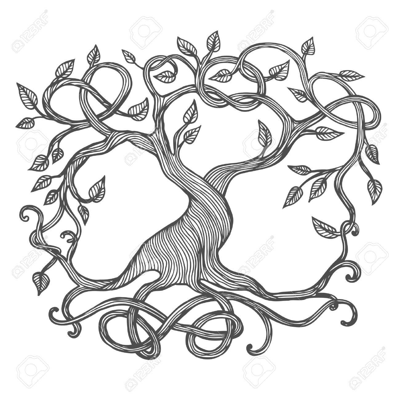 ケルト生命の樹ユグドラシルのイラストのイラスト素材ベクタ Image
