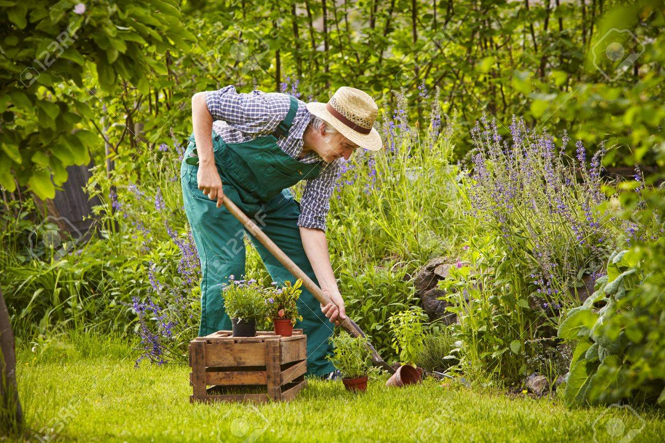 Man Working With Spade In The Garden Stock Photo Picture And Royalty Free Image Image 41765432