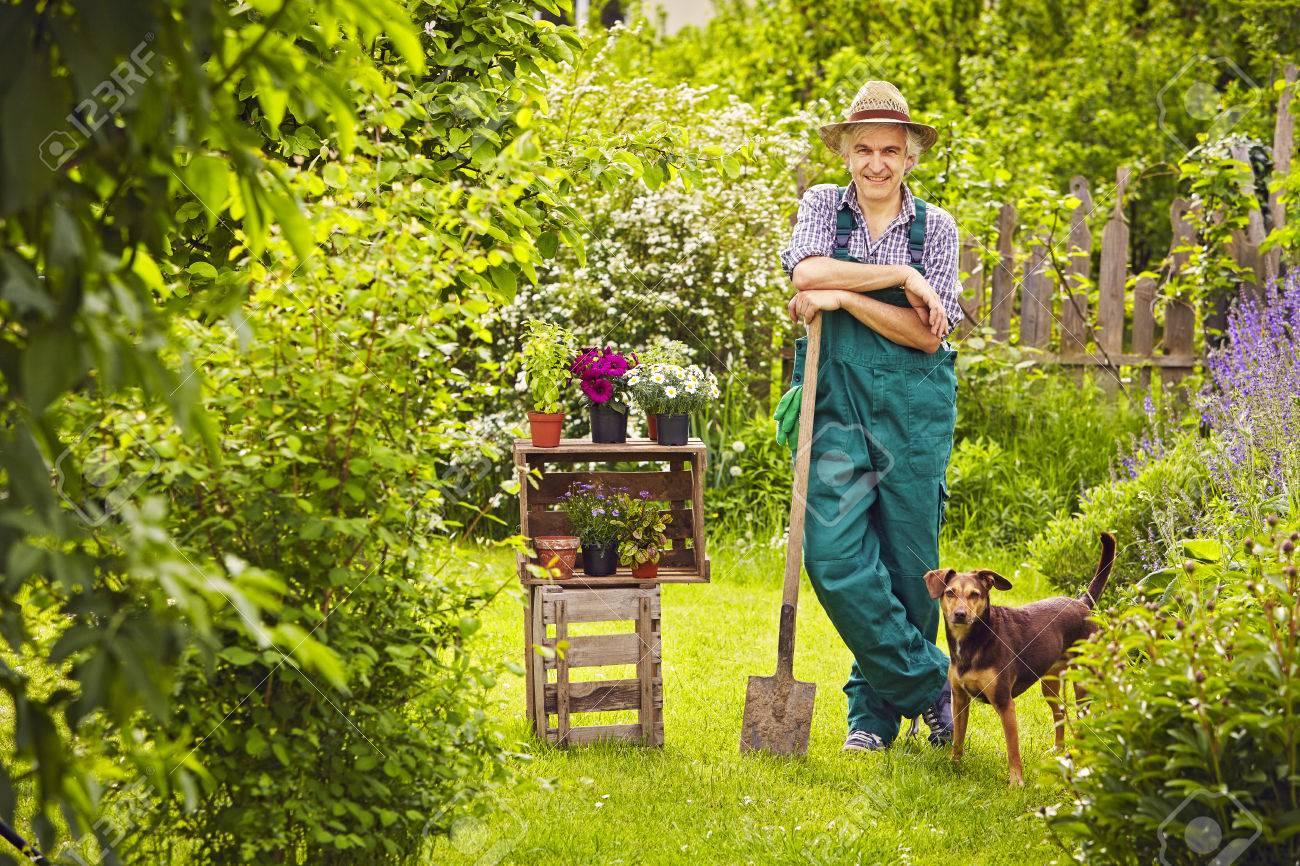 Jardinier dans le jardin avec petit chien sur une clôture penchant pour une  pause sur un chat