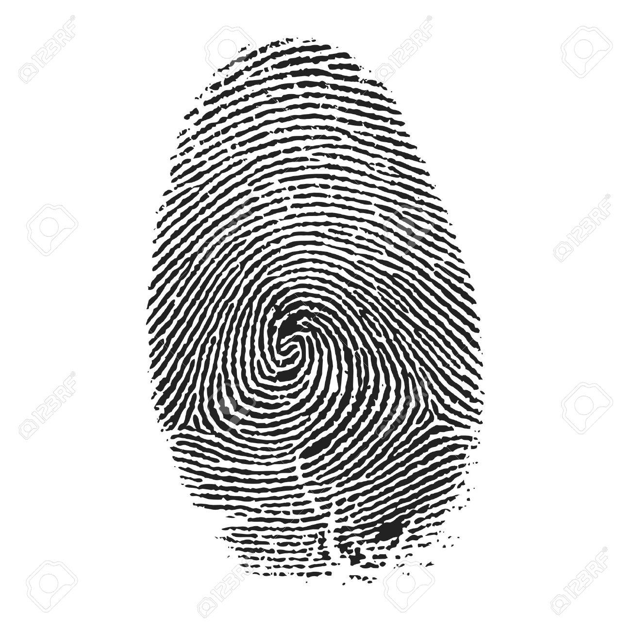 fingerprint vector royalty free cliparts vectors and stock rh 123rf com fingerprinting victoria texas fingerprint vector free download