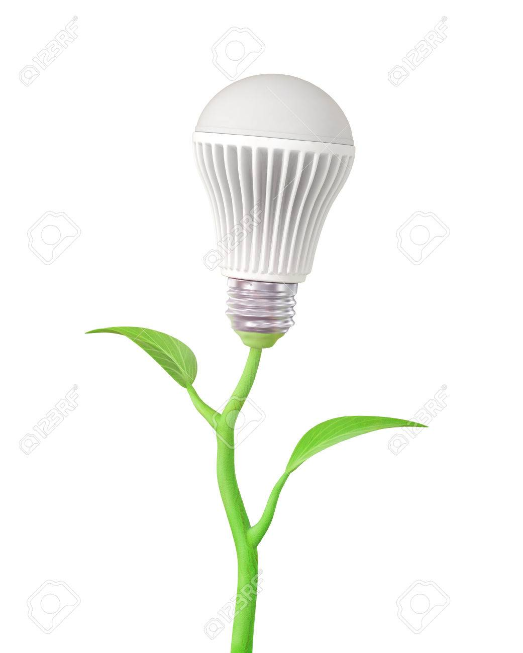 Concept of green energy. The LED light bulb on stem of plant on a white  sc 1 st  123RF Stock Photos & Concept Of Green Energy. The LED Light Bulb On Stem Of Plant ... azcodes.com