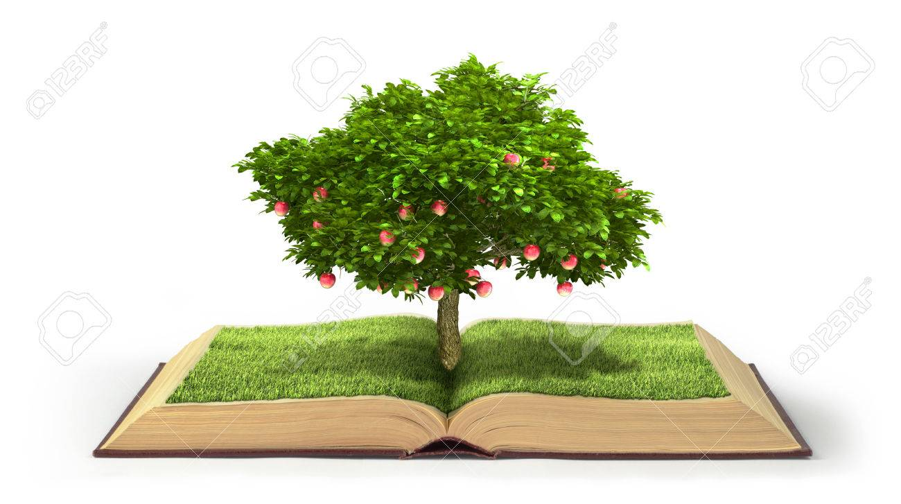 8a2ec1396cbd1 Tree with fruit of knowledge growing out of book isolated on white