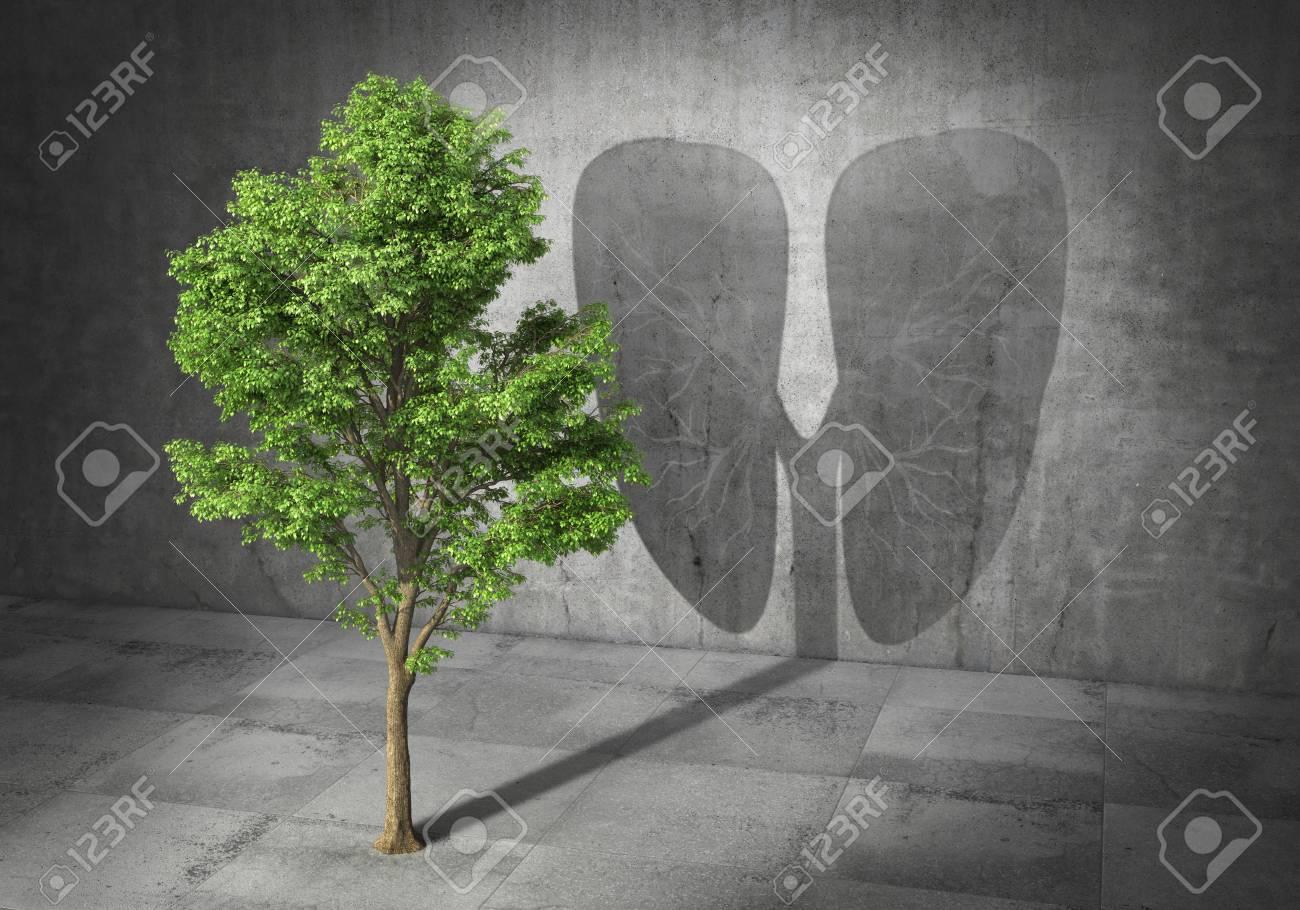Eco Konzept Grüner Baum Der Schatten In Form Von Lungen Wäscht