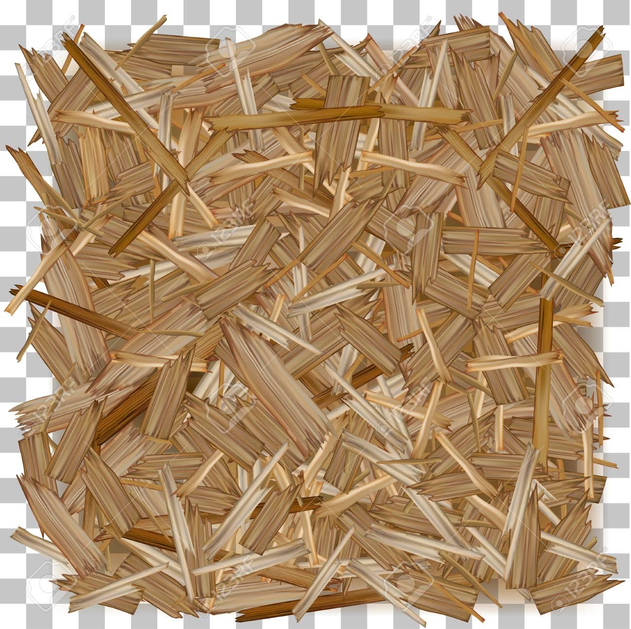 Vector wood. Pressed Wooden Panel (OSB) board. - 99731599