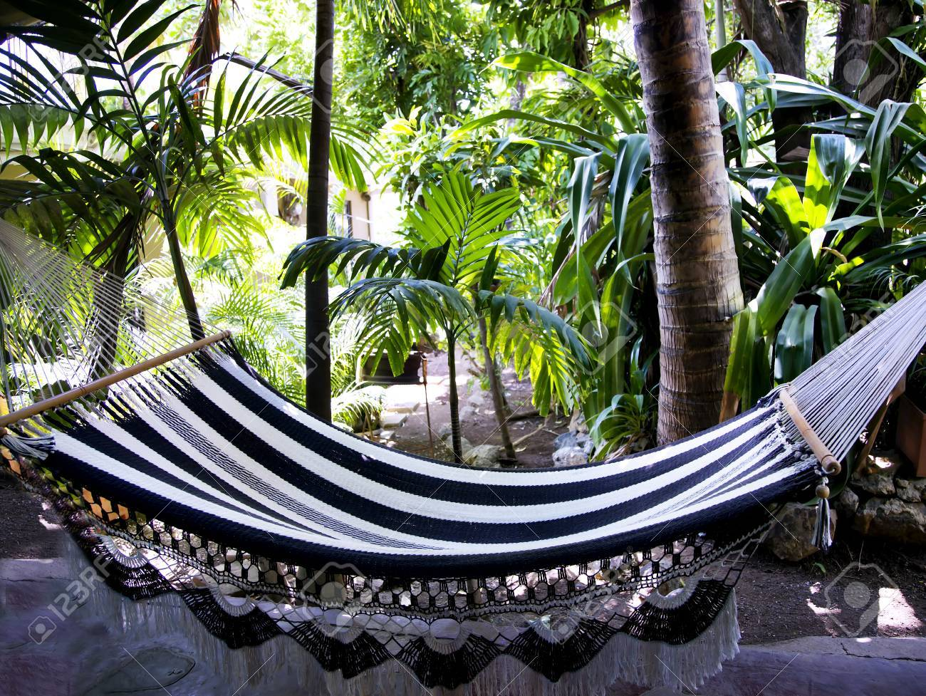 Medium image of rest in a hammock in costa rica s tropical jungles central america stock photo