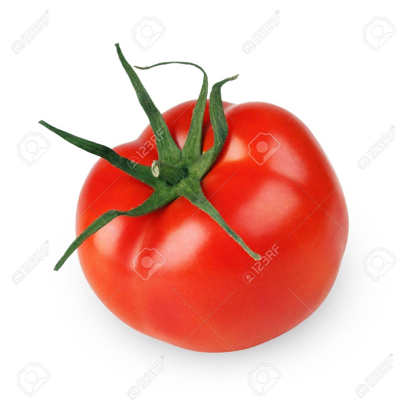 Single tomato vegetable isolated on white background - 11645815