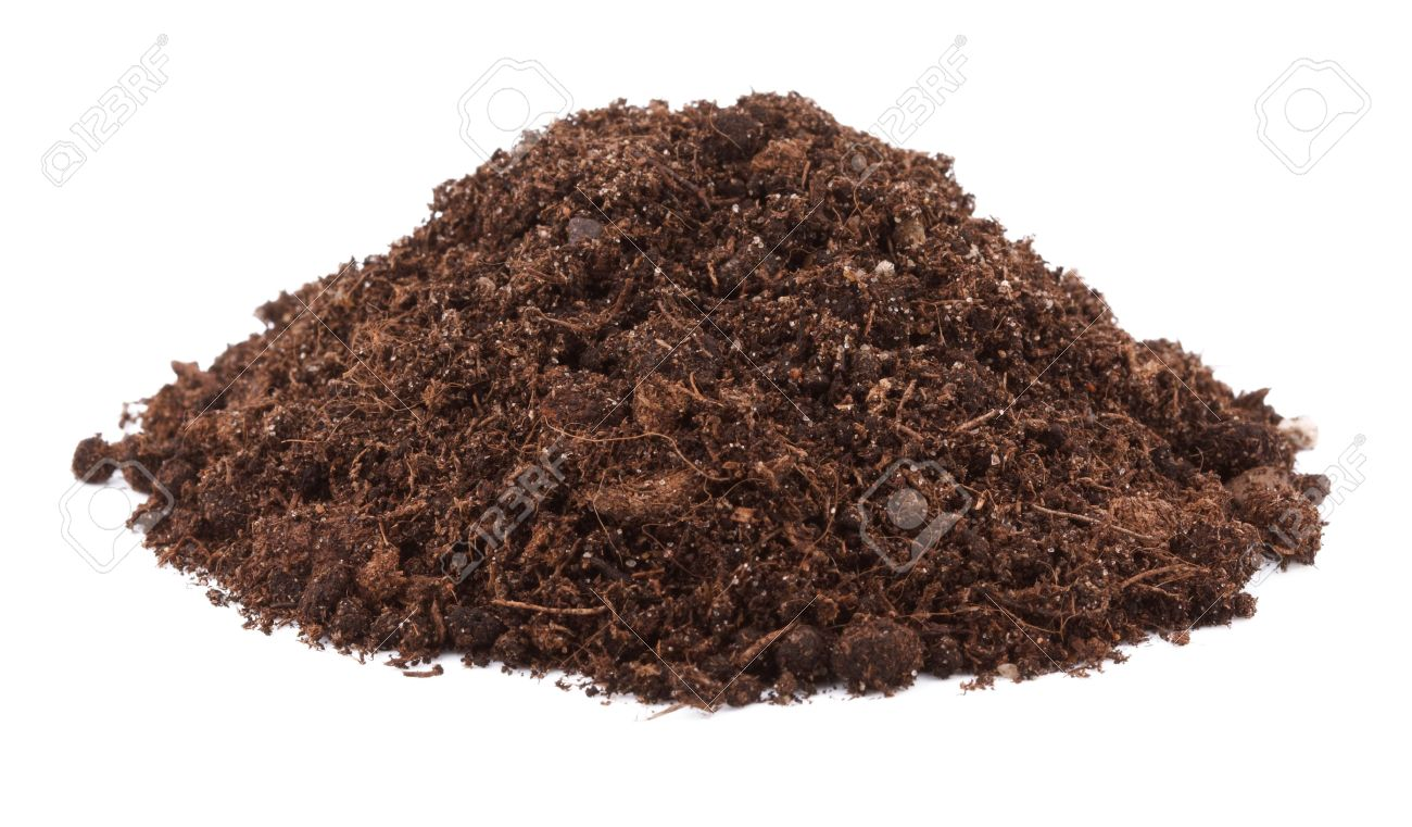 Pile of soil for plant isolated on white background Stock Photo - 13421884