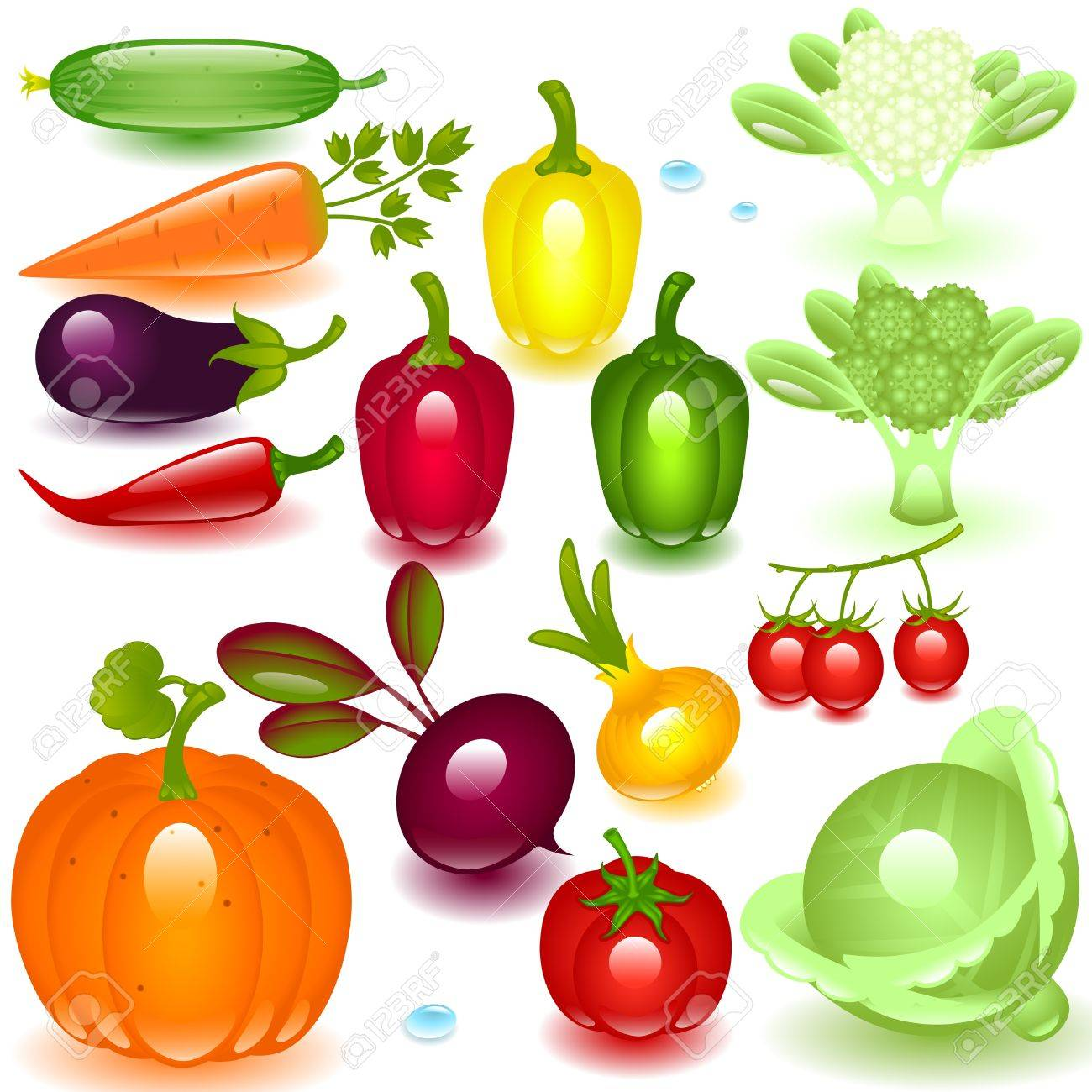 complete set vegetable on a white background Stock Vector - 9567319