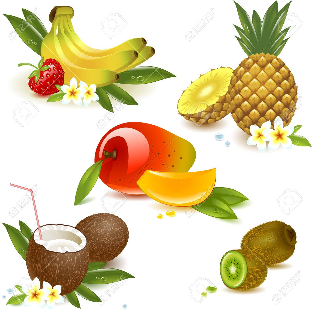 set tropical fruits isolated on the white. Vector illustration - 38938872