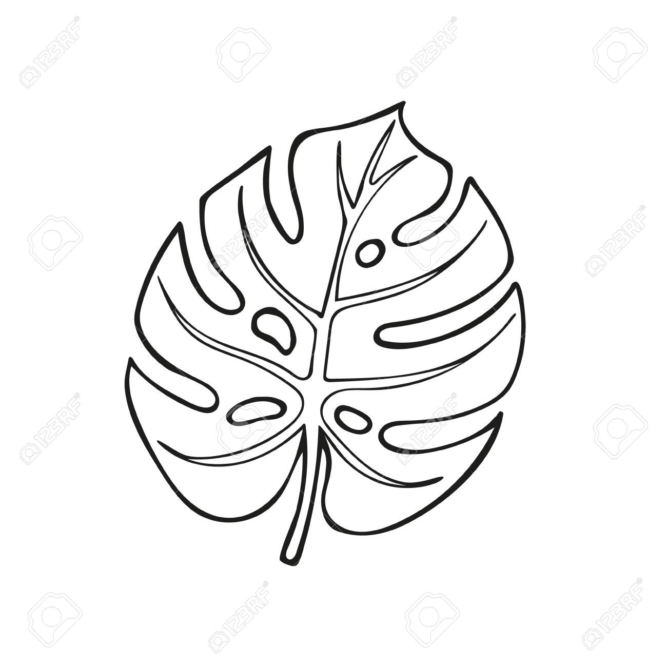 Single Hand Drawn Monstera Leaf Exotic Tropical Leaf In Doodle Royalty Free Cliparts Vectors And Stock Illustration Image 140640350 Collection of tropical leaf cliparts (47) tropical leaves clip art palm leaves outline single hand drawn monstera leaf exotic tropical leaf in doodle