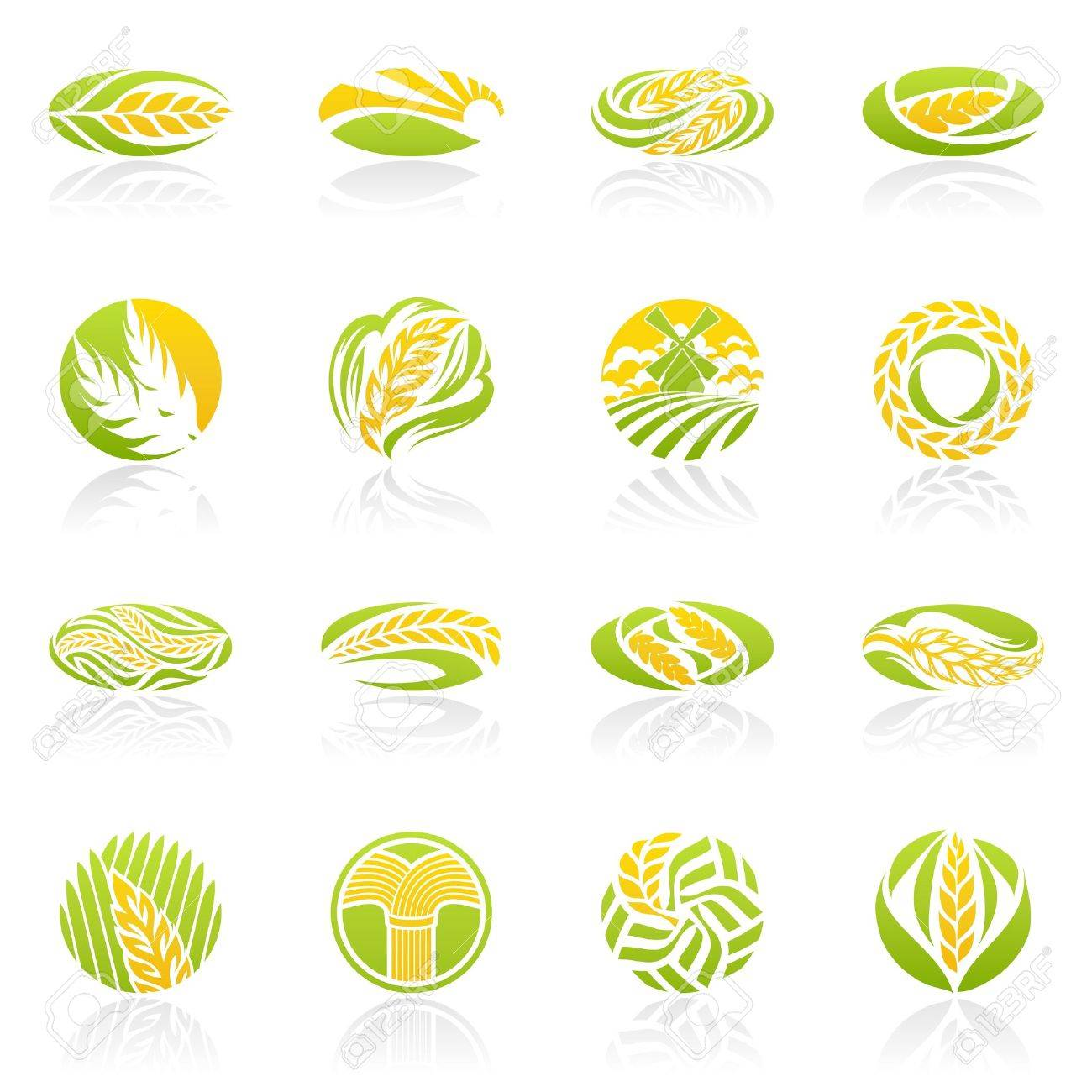 Wheat and rye. logo template set. Elements for design. Icon set. Stock Vector - 10692705