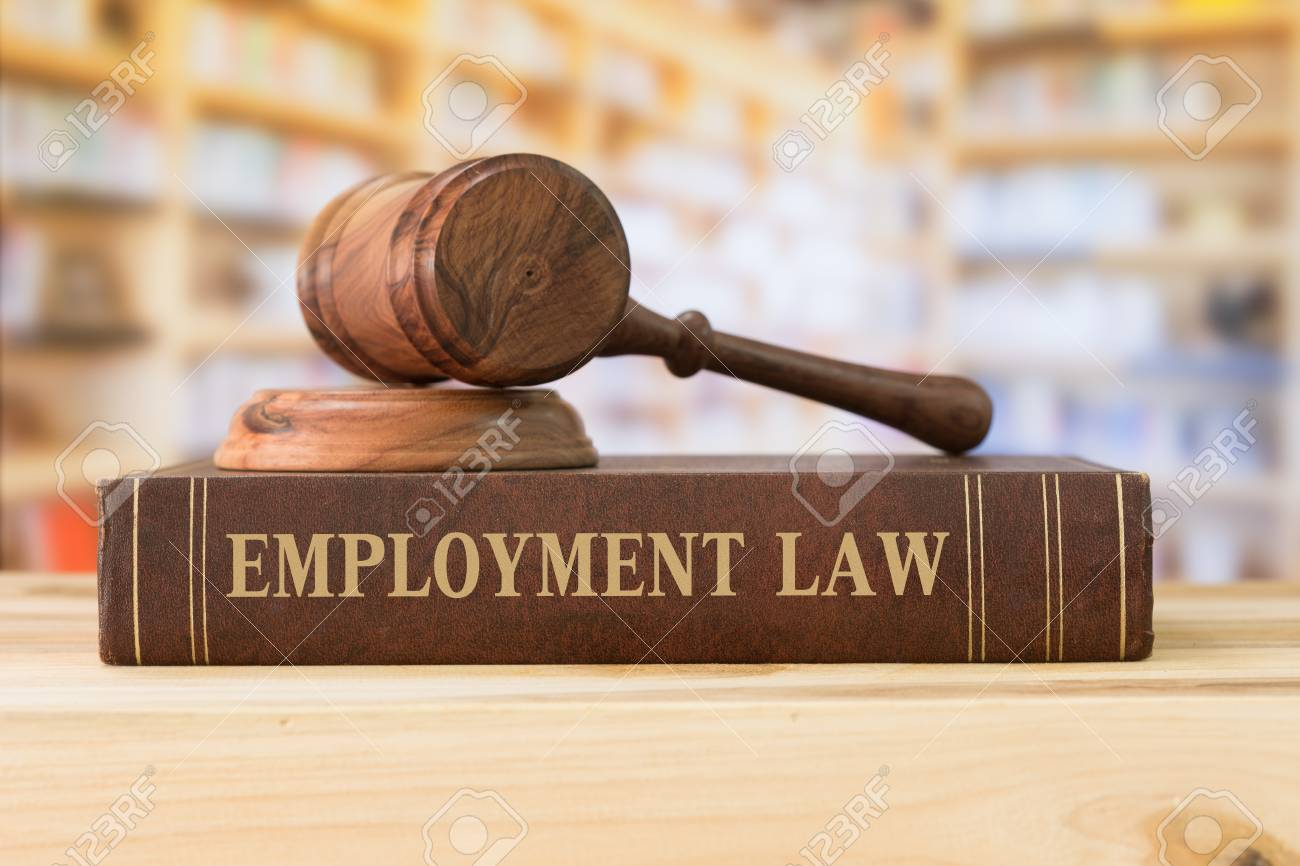 employment law books and a gavel on desk in the library. concept of legal education. - 98950835