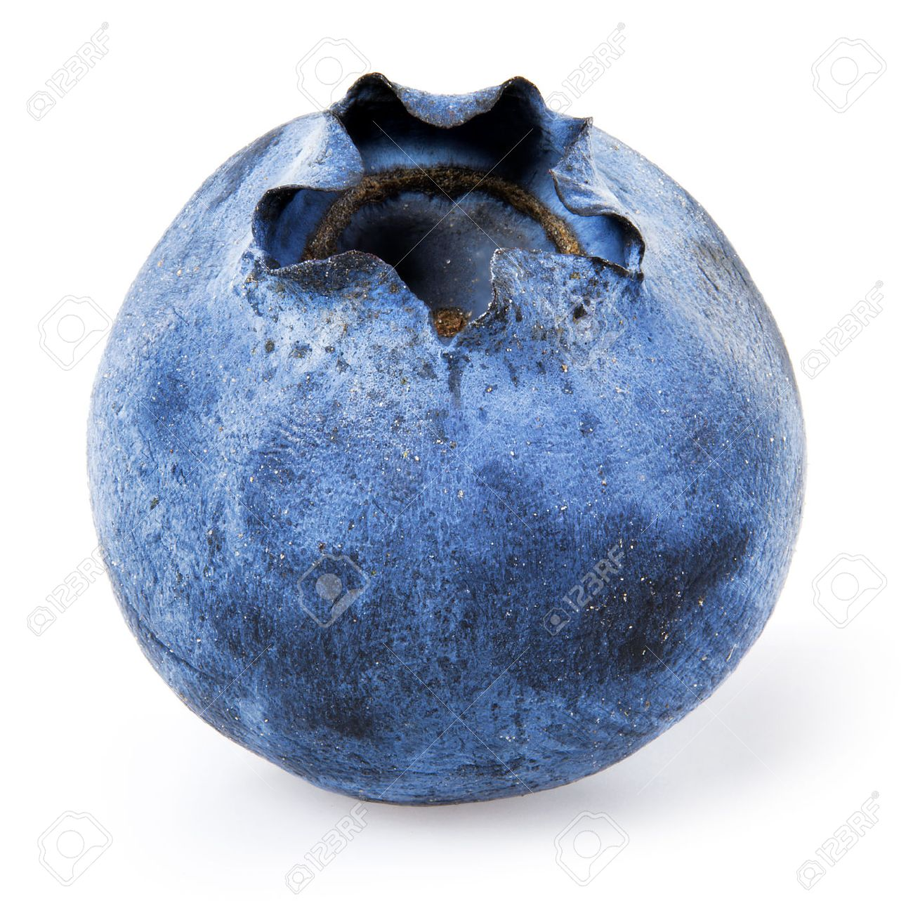 Blueberry. One Bilberry Isolated On White. Stock Photo, Picture And Royalty  Free Image. Image 36495274.