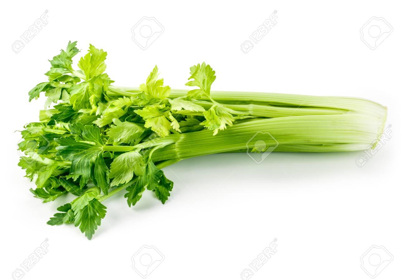 Fresh green celery isolated on white - 60261207