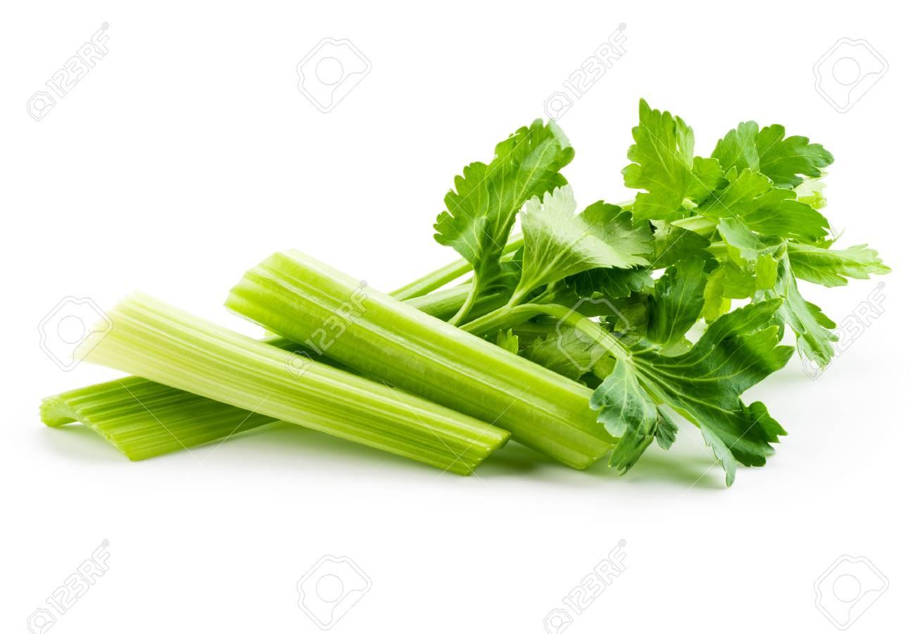 Fresh celery isolated on white background - 60261246