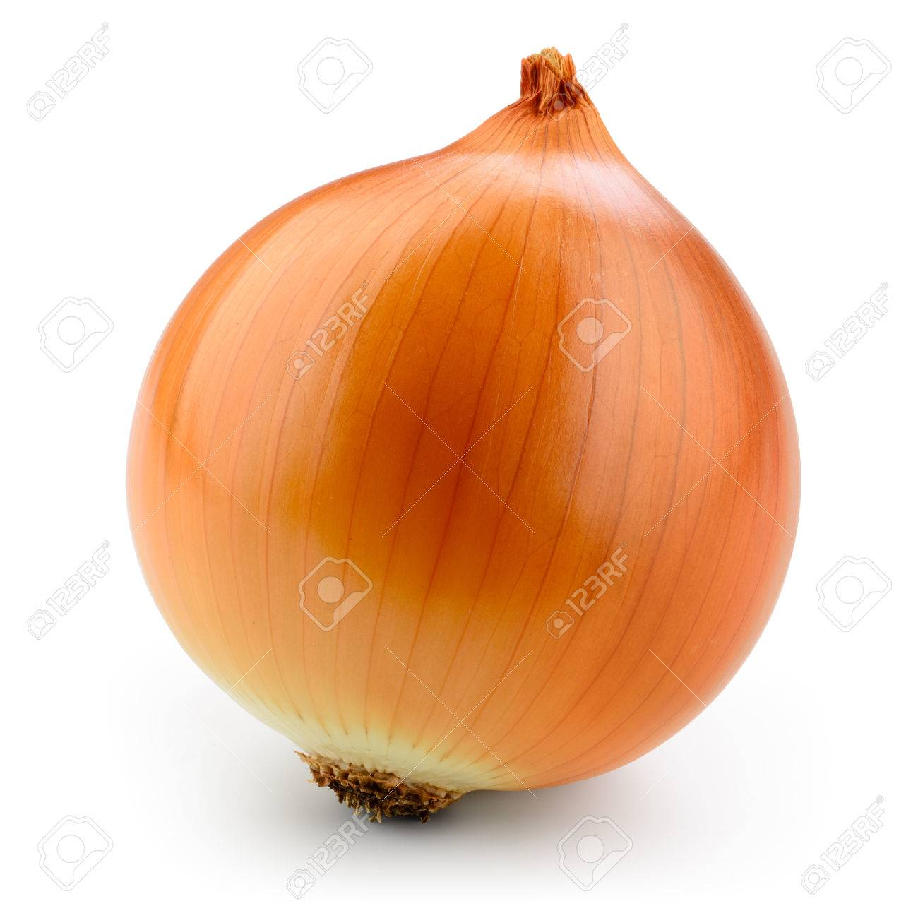 Fresh onion bulb isolated on white. With clipping path. - 62542528