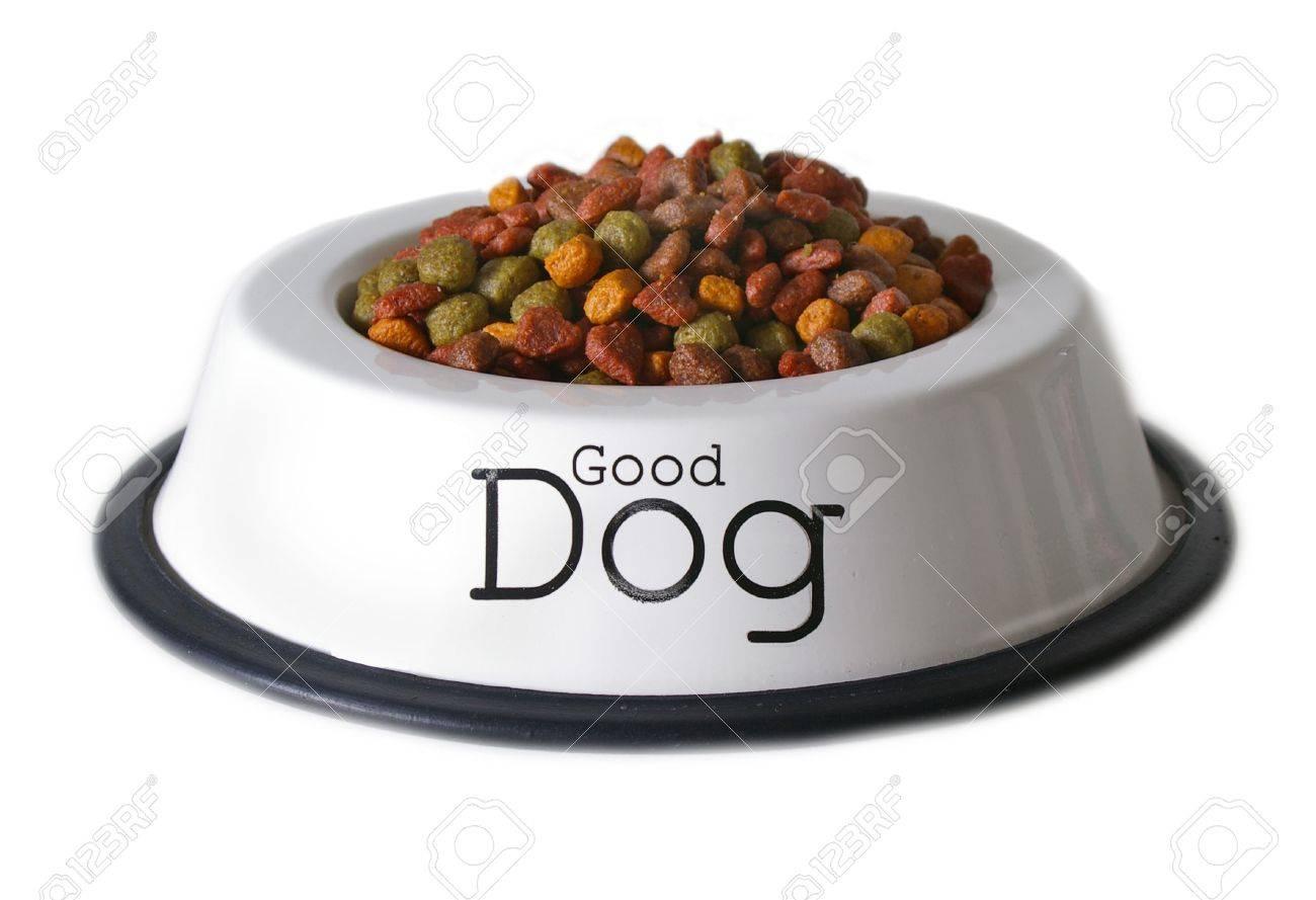 Aislado plato de comida para perros con las palabras  Foto de archivo - 430301