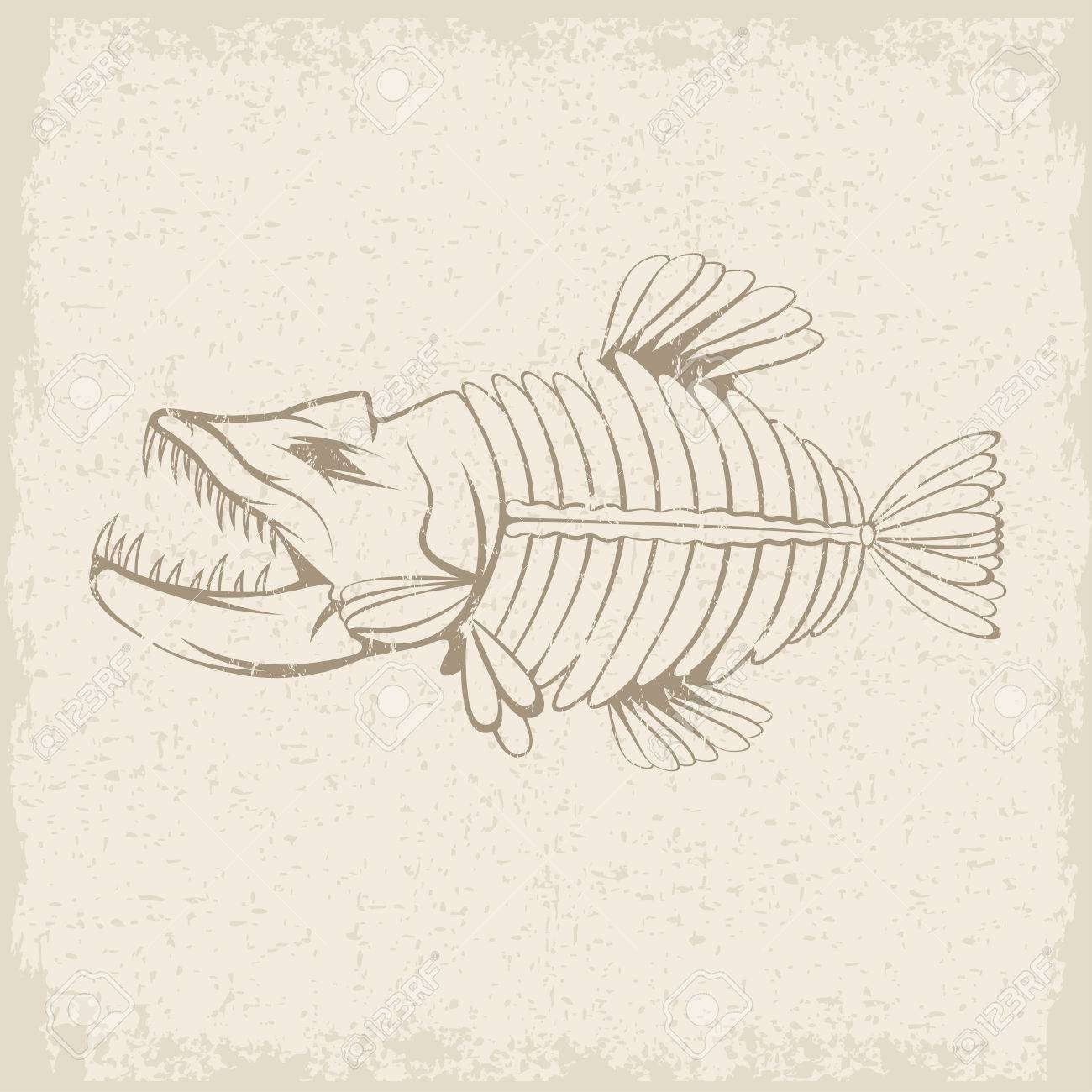 Grunge Vector Design Template Of Aggressive Tropical Fish Skeleton Stock