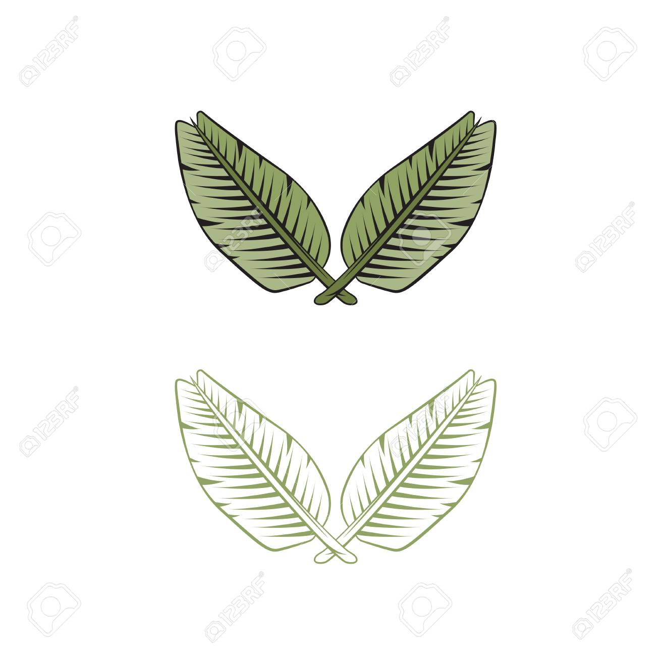 Two Crossed Leaves Of Palm Tree Vector Design Template Royalty Free