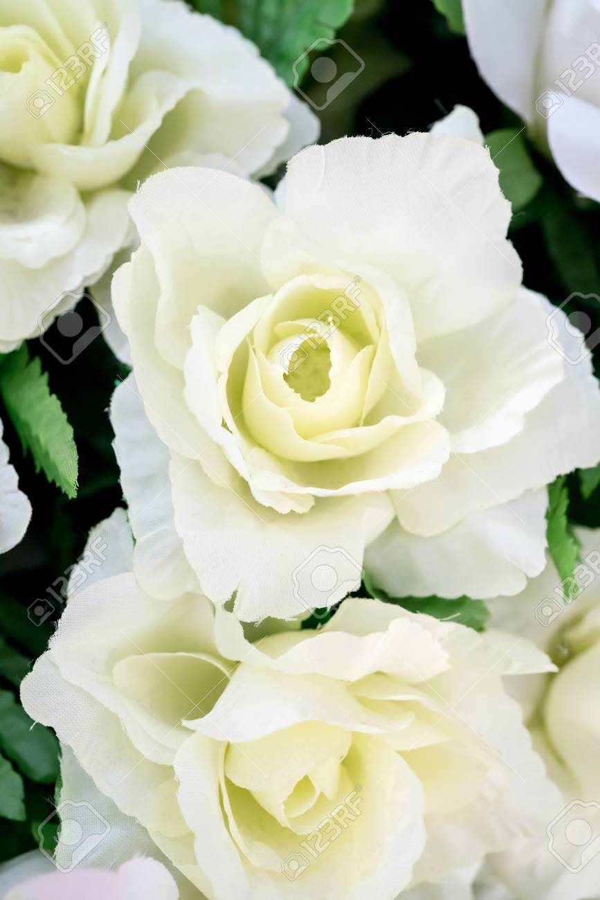 Artificial White Rose Flower Close Up On Blurred Background Stock