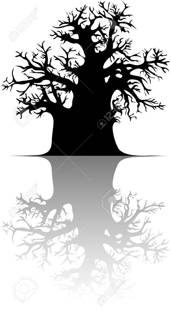 Baobab tree Stock Vector - 13711785