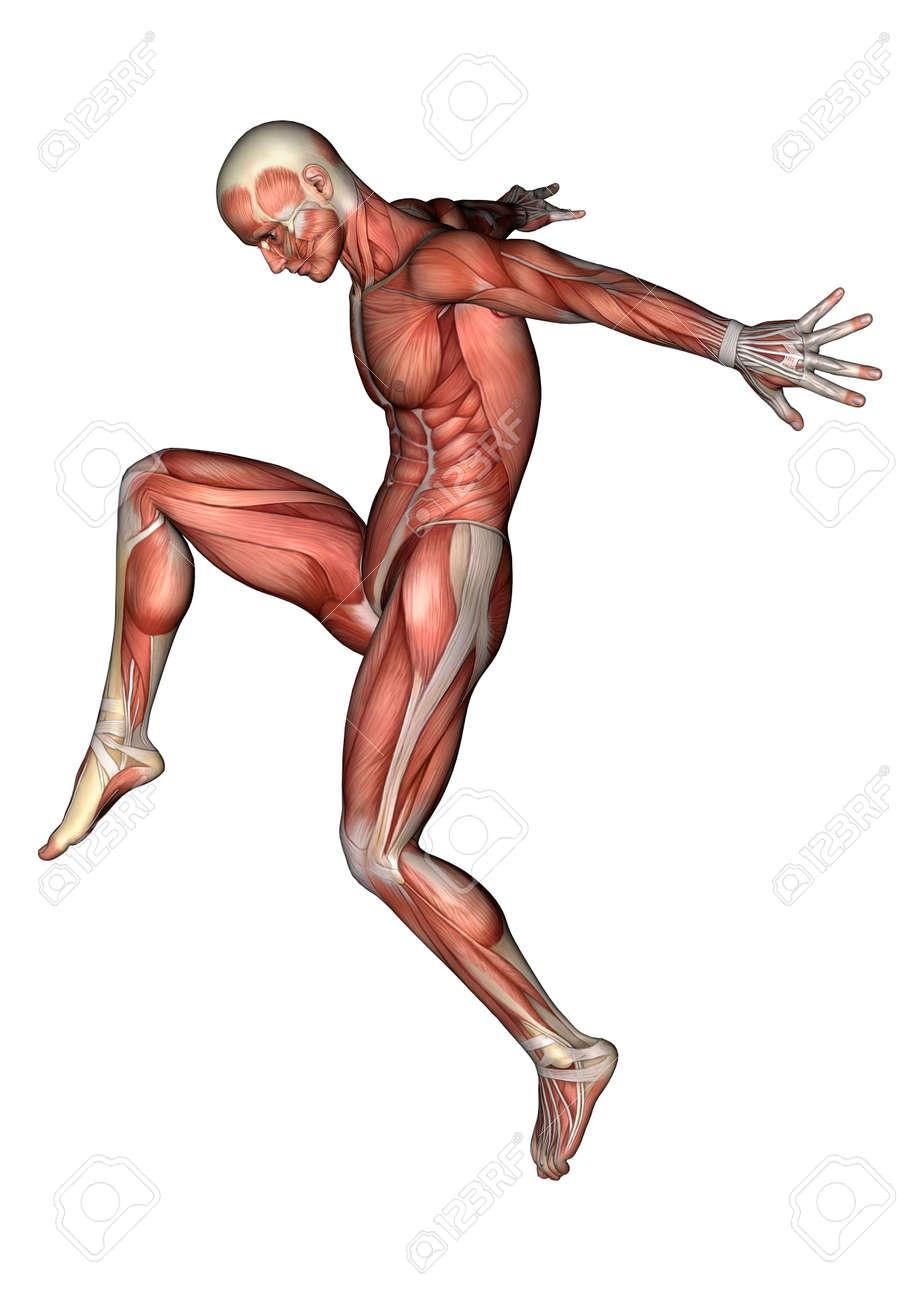 Digitale 3D-Darstellung Von Einem Springen Männlichen Anatomie Figur ...