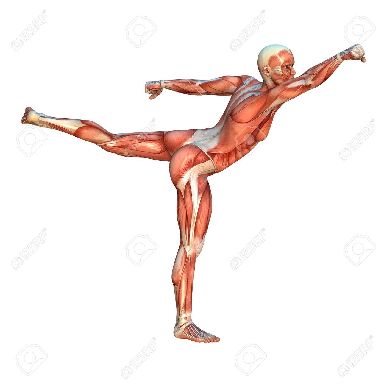 Image result for human yoke