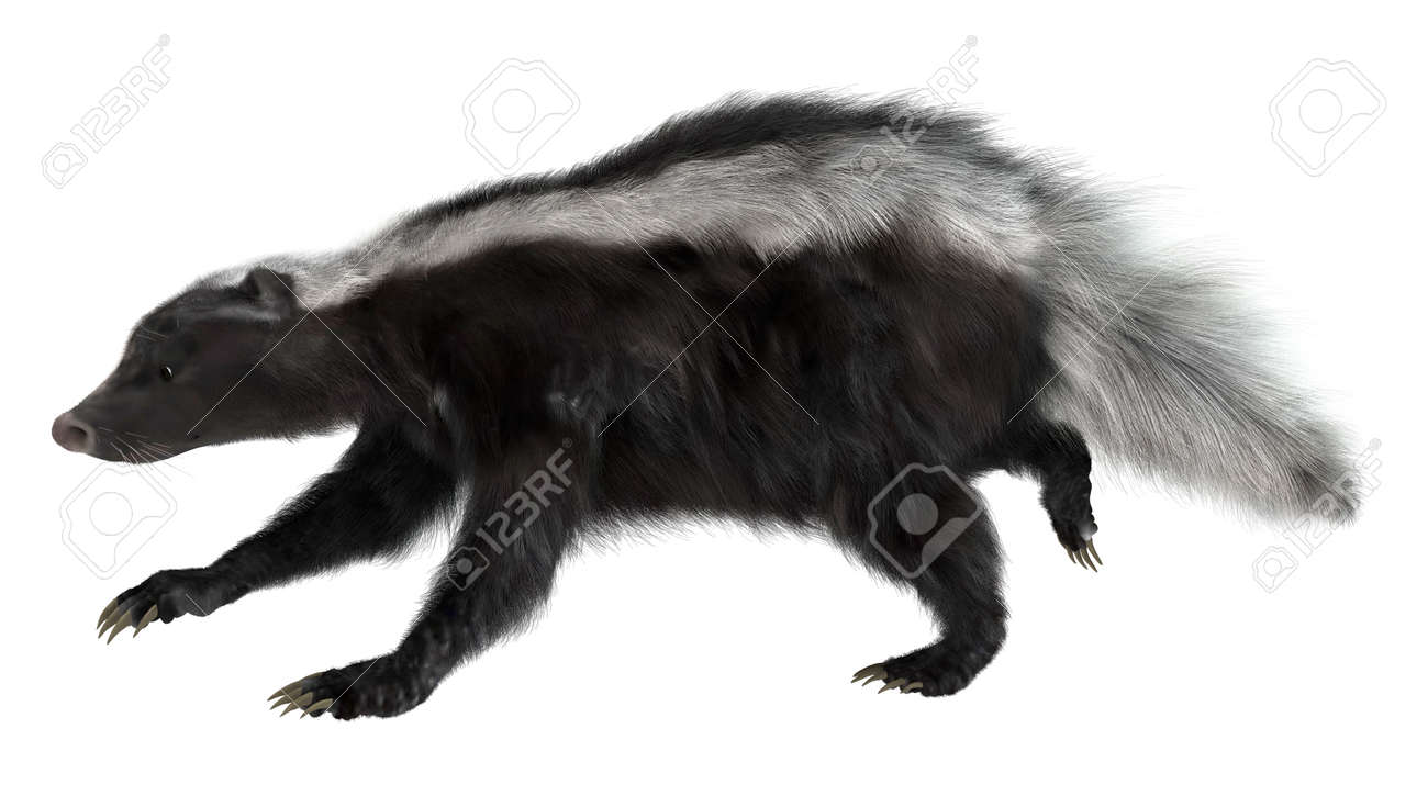 3d digital render of a running skunk isolated on white background