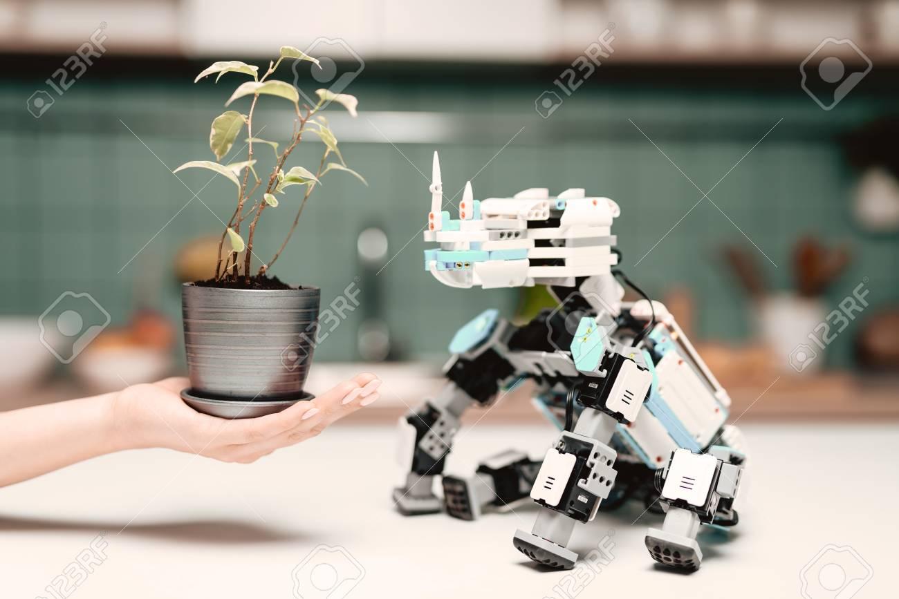 Immagini Stock - Un Robot Rinoceronte Si Siede Sul Tavolo Della ...