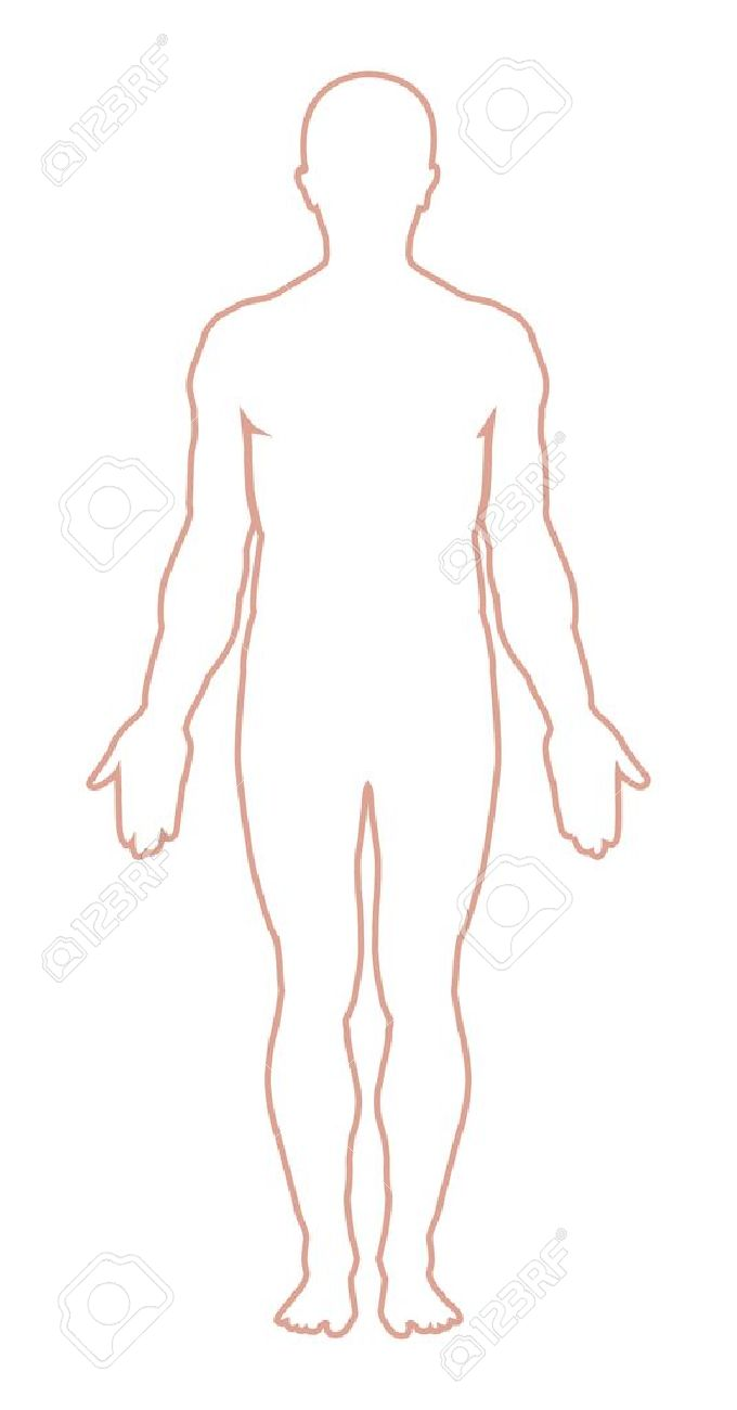 Human Body Vector Free Male Body Outline Vector