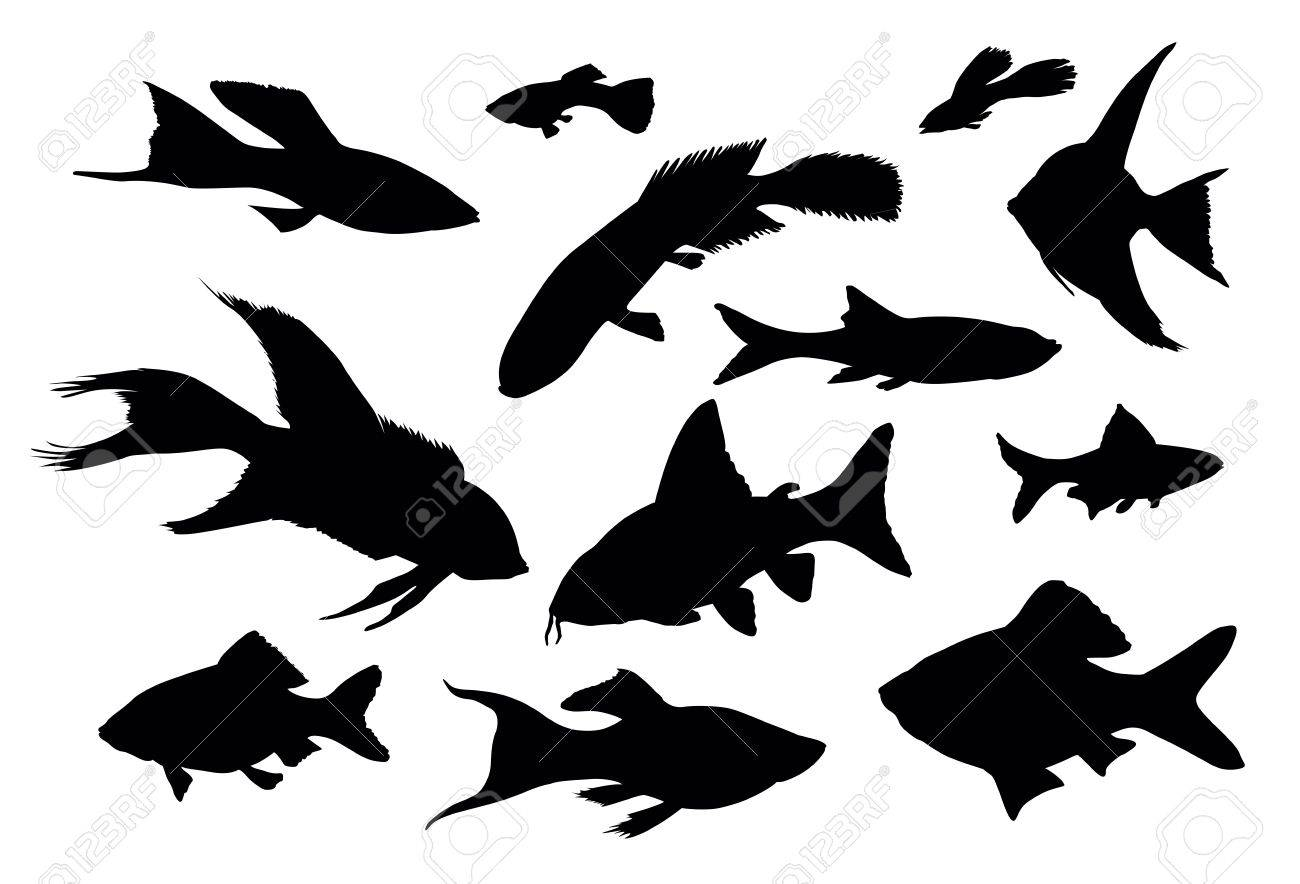 Vector fish silhouettes isolated Stock Vector - 11914503
