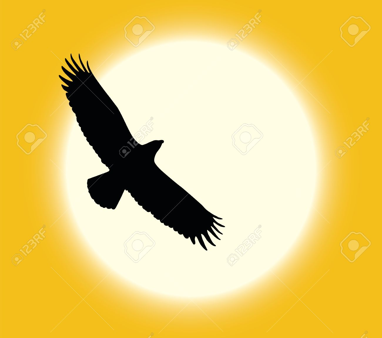 Silhouette of flying eagle on sun background Stock Vector - 11915880