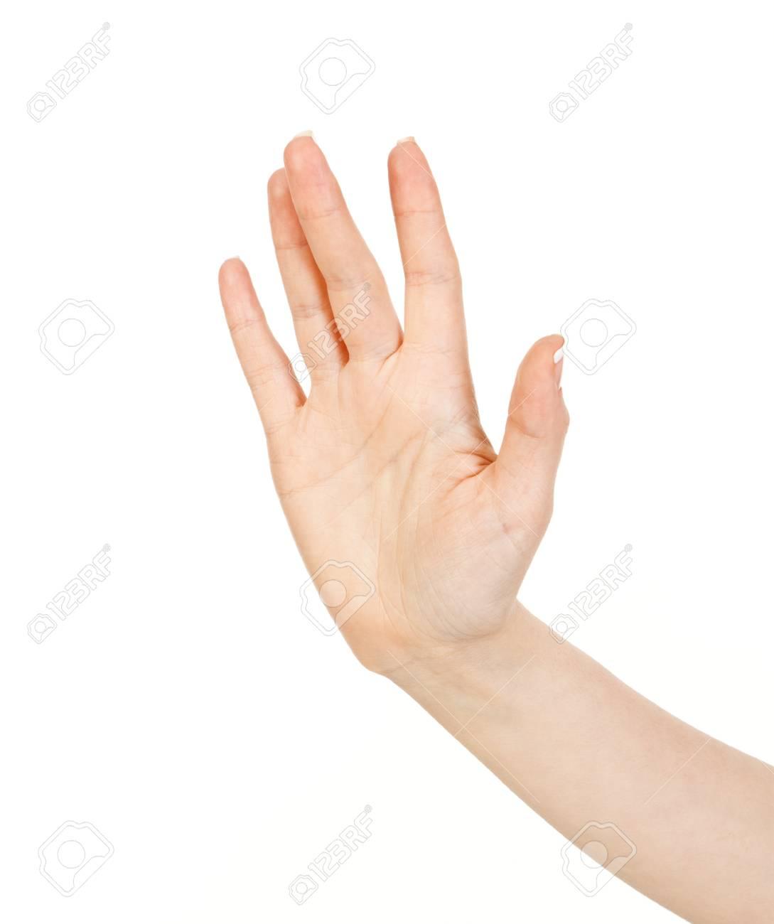 woman hand Stock Photo - 13007951