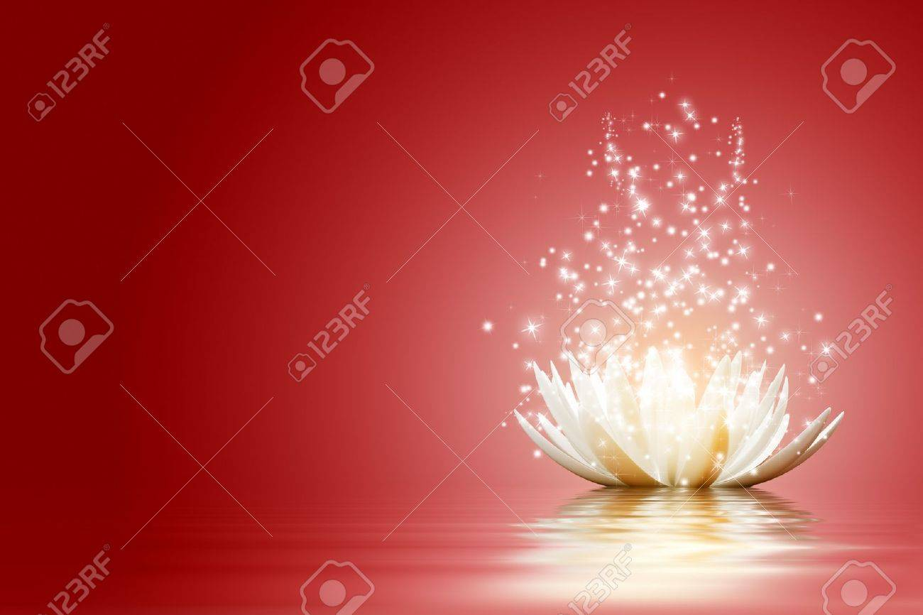 Magic Lotus flower Stock Photo - 15774551