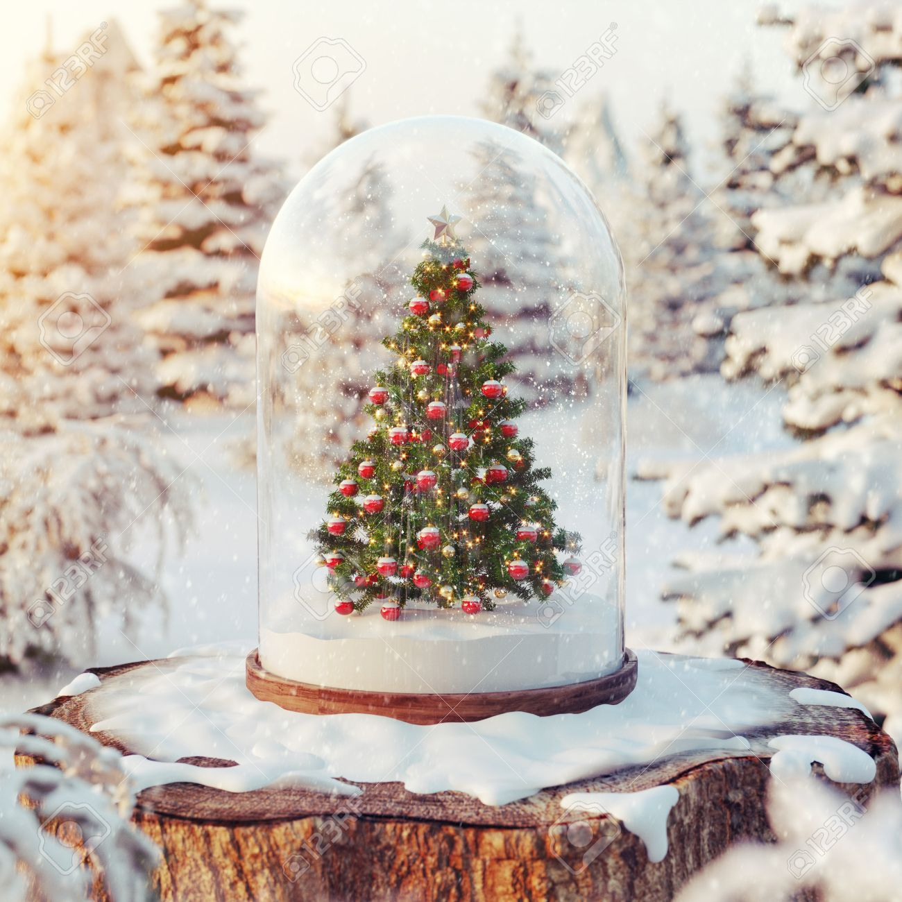 cute little christmas tree under glass dome in a forest at sunset unusual christmas 3d - Little Christmas Tree