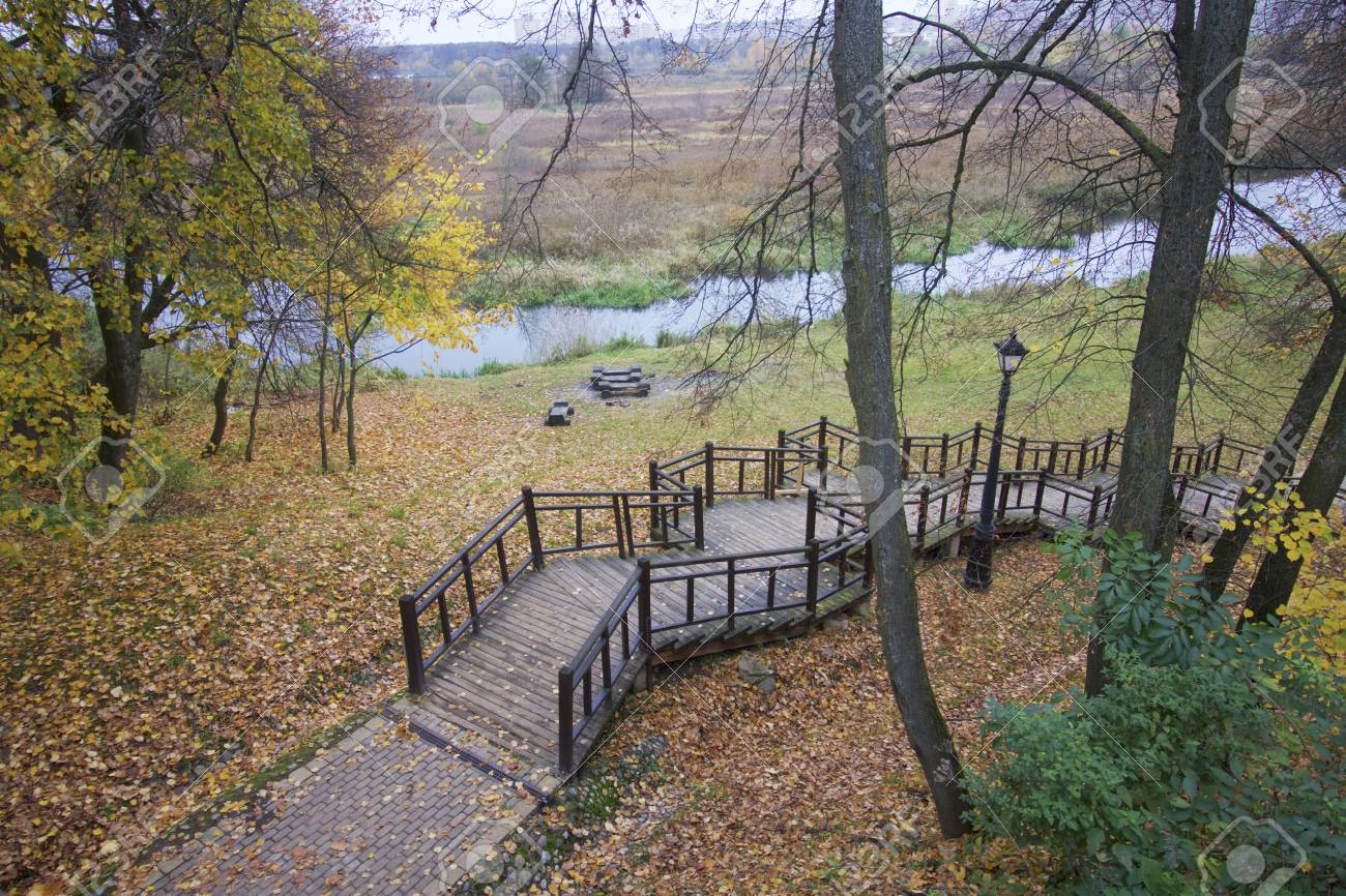 Autumn Landscape In The City Park On The Ground A Carpet Of